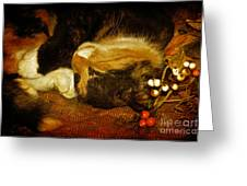 Cat Catnapping Greeting Card by Lois Bryan