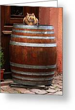 Cat Guarding A Wine Barrel In Alsace Greeting Card by Greg Matchick