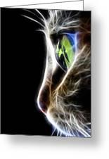 Cat Macro Greeting Card by Mark Ashkenazi
