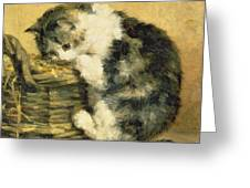Cat With A Basket Greeting Card by Charles Van Den Eycken