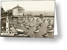Catalina Island. Avalon Greeting Card by Ben and Raisa Gertsberg