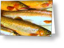 Catch of The Day - Painterly - v2 Greeting Card by Wingsdomain Art and Photography