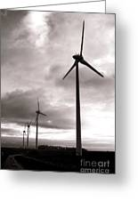Catch The Wind Greeting Card by Olivier Le Queinec