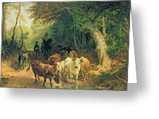 Cattle Watering In A Wooded Landscape Greeting Card by Friedrich Johann Voltz
