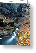 Cavernous Walls Greeting Card by Frozen in Time Fine Art Photography