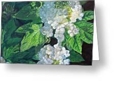 Celebration Sunrise Greeting Card by Bonnie Mason