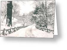 Central Park Winter Landscape Greeting Card by Vivienne Gucwa