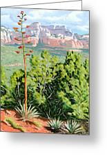 Century Plant - Sedona Greeting Card by Steve Simon