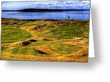 Chambers Bay Lone Tree Greeting Card by David Patterson