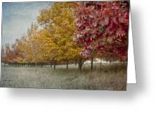 Changing Of The Seasons Greeting Card by Jeff Swanson