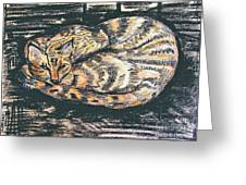 Charcoal Tabby Greeting Card by Caroline Street
