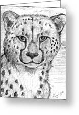 Cheetah Greeting Card by Tricia Griffith