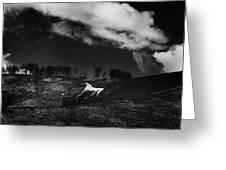 Cherhill White Horse Wiltshire Greeting Card by Mark Preston