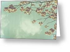 Cherry Blossom In Fulwood Park Greeting Card by Georgia Fowler