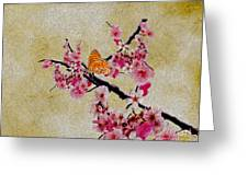 Cherry Blossoms Greeting Card by Cheryl Young