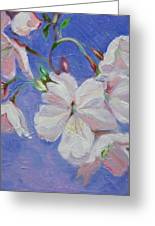Cherry Blossoms Greeting Card by Karen Roncari
