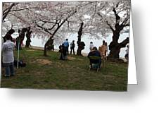 Cherry Blossoms - Washington Dc - 0113132 Greeting Card by DC Photographer