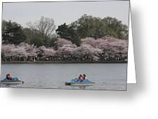 Cherry Blossoms - Washington Dc - 011315 Greeting Card by DC Photographer