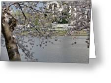 Cherry Blossoms With Jefferson Memorial - Washington Dc - 011336 Greeting Card by DC Photographer