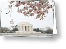 Cherry Blossoms With Jefferson Memorial - Washington Dc - 011350 Greeting Card by DC Photographer