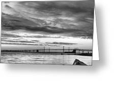 Chesapeake Mornings BW Greeting Card by JC Findley