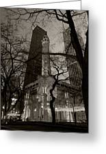 Chicago Water Tower B W Greeting Card by Steve Gadomski