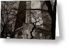 Chicago Water Tower B W Greeting Card by Steve Gadomski