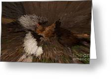 Chicken Art Greeting Card by Donna Brown