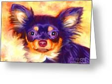 Chihuahua Art Greeting Card by Iain McDonald