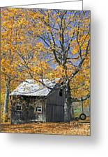 Childhood Memories Tire Swing  Greeting Card by Timothy Flanigan