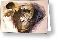 Chimpanzee Greeting Card by Julian Wheat