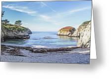 China Cove Point Lobos Greeting Card by Brad Scott
