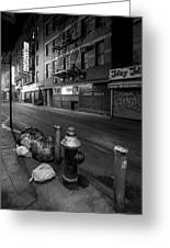 Chinatown New York City - Joe's Ginger On Pell Street Greeting Card by Gary Heller