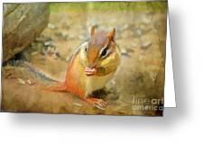 Chipmonk - Digital Paint I Greeting Card by Debbie Portwood
