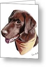 Chocolate Lab Greeting Card by Eric Smith