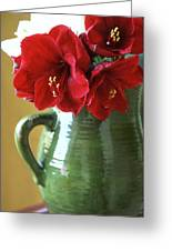 Christmas Amaryllis Greeting Card by Kathy Yates