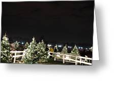 Christmas At The Ellipse - Washington Dc - 01136 Greeting Card by DC Photographer