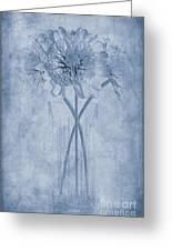 Chrysanthemum Cyanotype Greeting Card by John Edwards