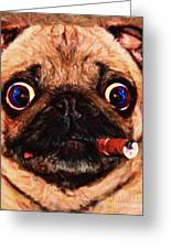 Cigar Puffing Pug - Painterly Greeting Card by Wingsdomain Art and Photography