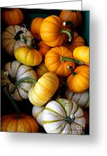 Cinderella Pumpkin Pile Greeting Card by Kerri Mortenson