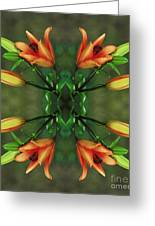 Circle Of Life Greeting Card by Inspired Nature Photography By Shelley Myke