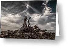 Cirrus Clouds At Sunset Greeting Card by Marc Crumpler