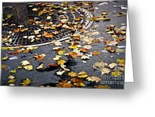 City Fall Greeting Card by Elena Elisseeva