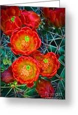 Claret Cup Greeting Card by Inge Johnsson