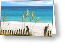 Clear Water Florida Greeting Card by Anthony Fishburne