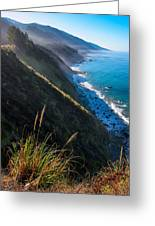 Cliff Grass At Big Sur Greeting Card by Adam Pender