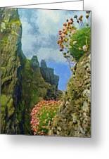 Cliffside Sea Thrift Greeting Card by Jeff Kolker
