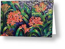 Clivias In Bloom Greeting Card by Caroline Street