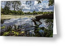 Clouds On The Water Greeting Card by CJ Schmit