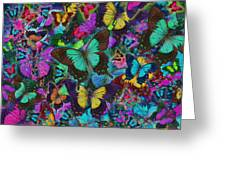 Cloured Butterfly Explosion Greeting Card by Alixandra Mullins